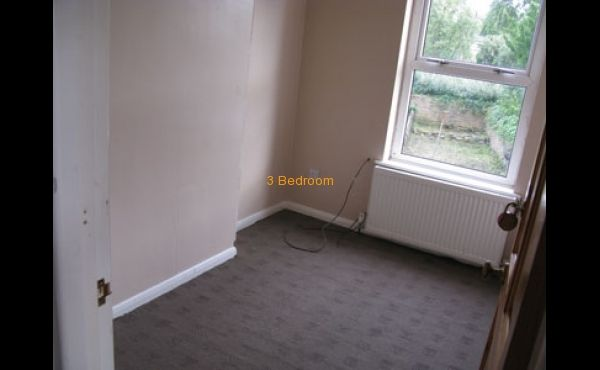 Bedroom 2 Single room